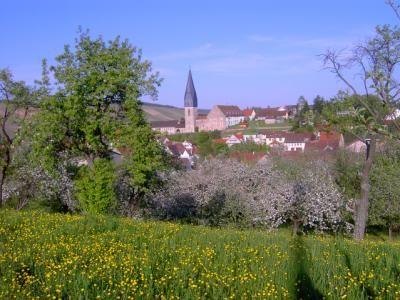 Markelsheim3