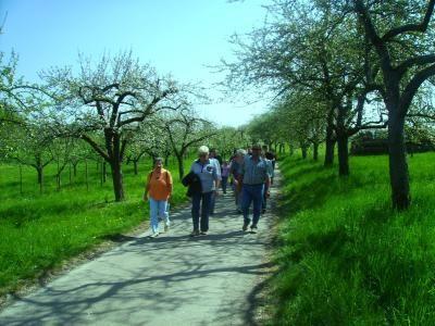 Markelsheim Wanderer