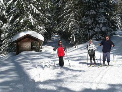 Langlauf auf dem Sommerberg
