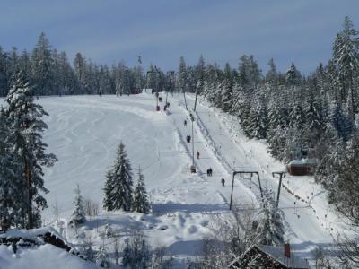 Alpinskihang Kaltenbronn
