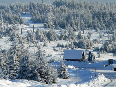 Winterl. Schwarzwald