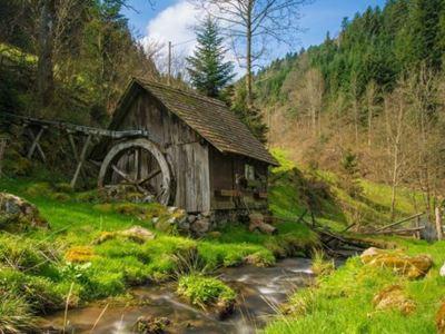 Pfingsten im Schwarzwald