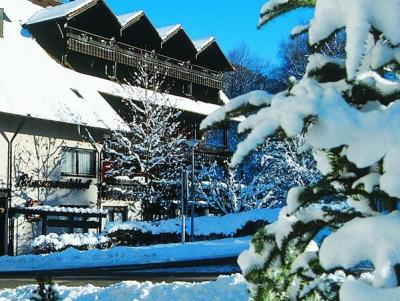 Winter im Schwarzwaldhof