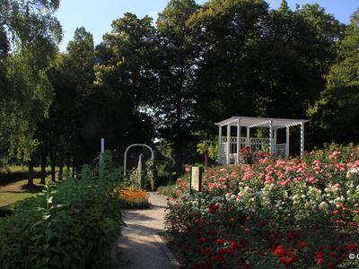 Kurpark Rosengarten