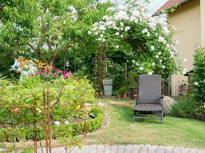 Garten unten (31)