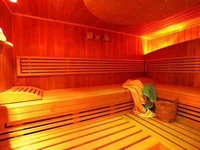 Finische Sauna bear