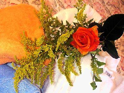 Rose Handtücher   Kosmetik 2011-04-15 10-57-16_0089