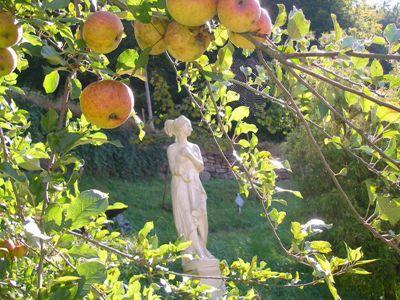 Waldgarten - Apfel +Fg. 1