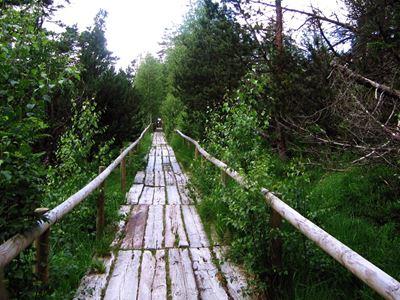 Wandern - Wildsee -Weg